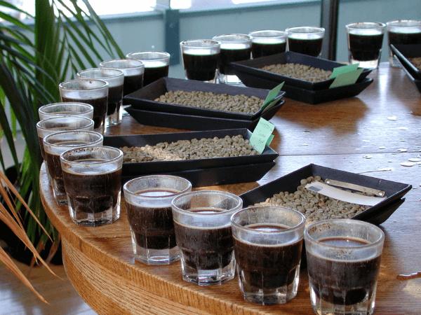 ¿Cómo se cata el café?